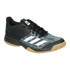 Indoor Schoenen Intersport Theo Tol