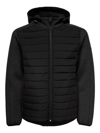 First Brion Quilted Zip hood Jacket 15166319