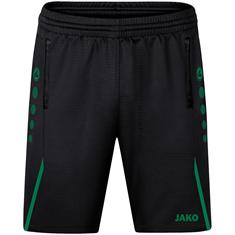 JAKO Trainingsshort Challenge 8521-813