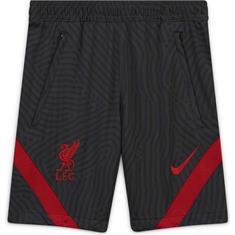 NIKE Liverpool FC ynk dry strke shrt jaq kz cz2745-060