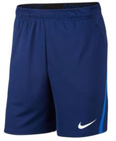 NIKE nike dri-fit men's training shorts cj2007-492