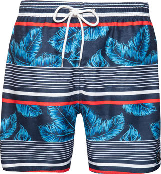 PROTEST prem beachshort 2781891-941