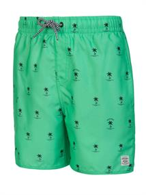 PROTEST viggo jr beachshort 2812291-160